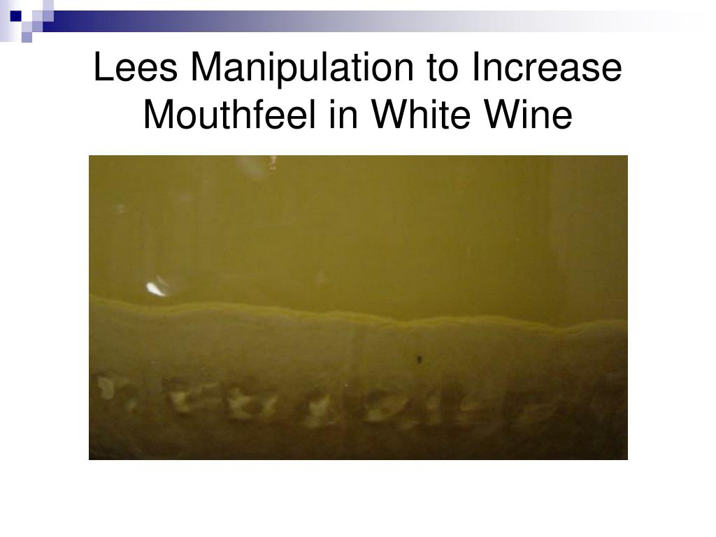 lees manipulation to increase mouthfeel in white wine l.