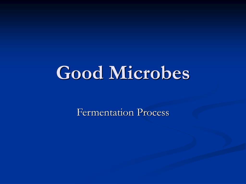 good microbes l.