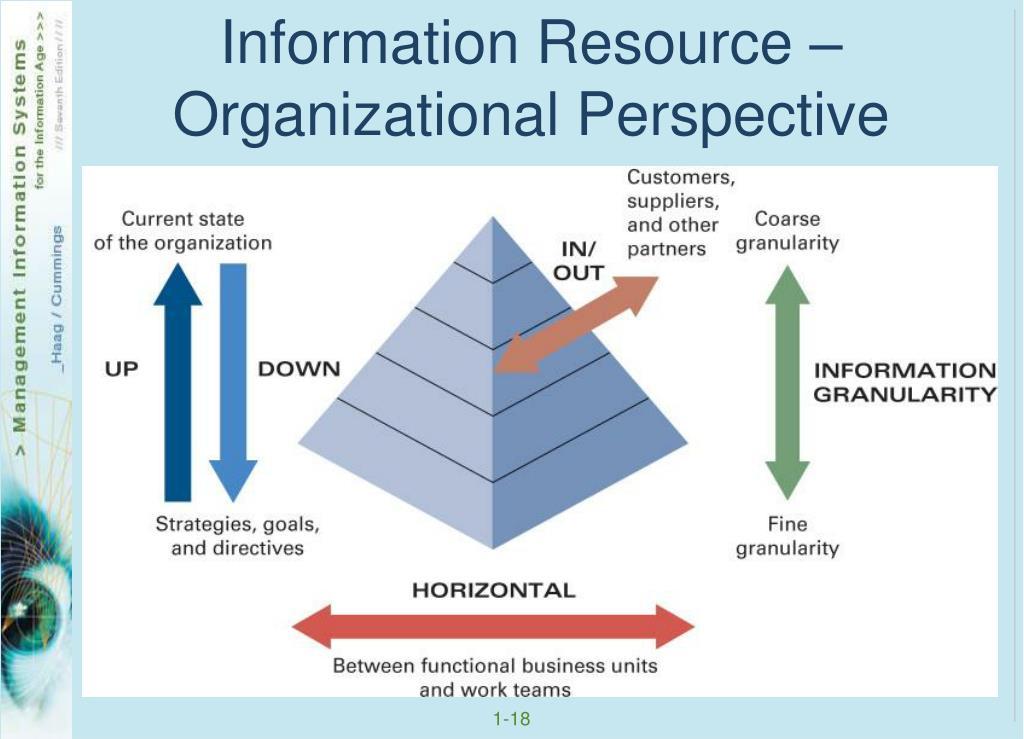 Information Resource – Organizational Perspective