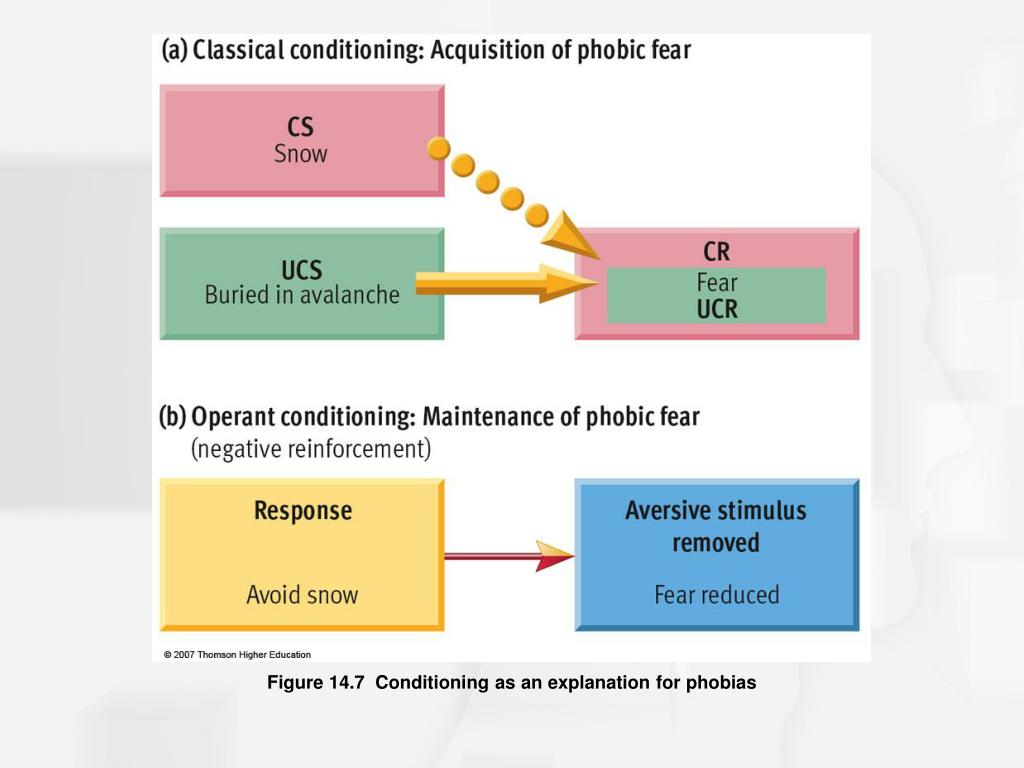 Figure 14.7  Conditioning as an explanation for phobias