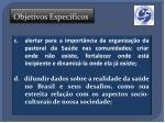 objetivos espec ficos13