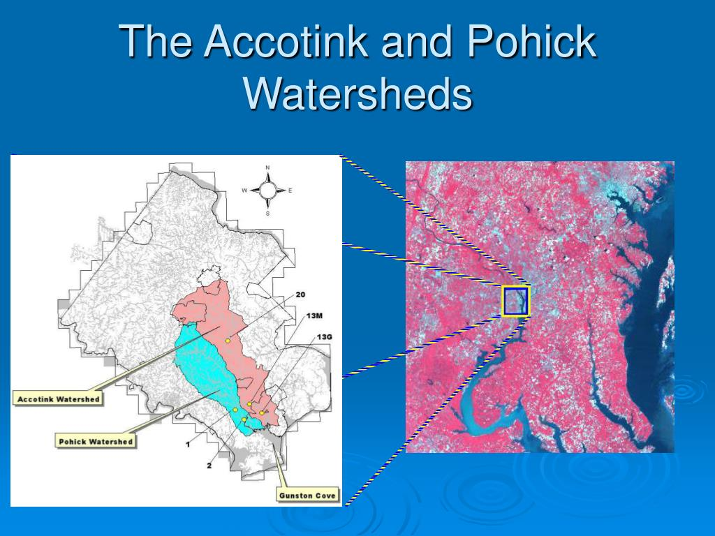 The Accotink and Pohick Watersheds