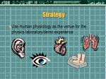 strategy16