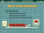waves sound and hearing