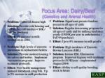 focus area dairy beef genetics and animal health17