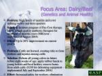 focus area dairy beef genetics and animal health18