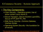 e commerce security systems approach