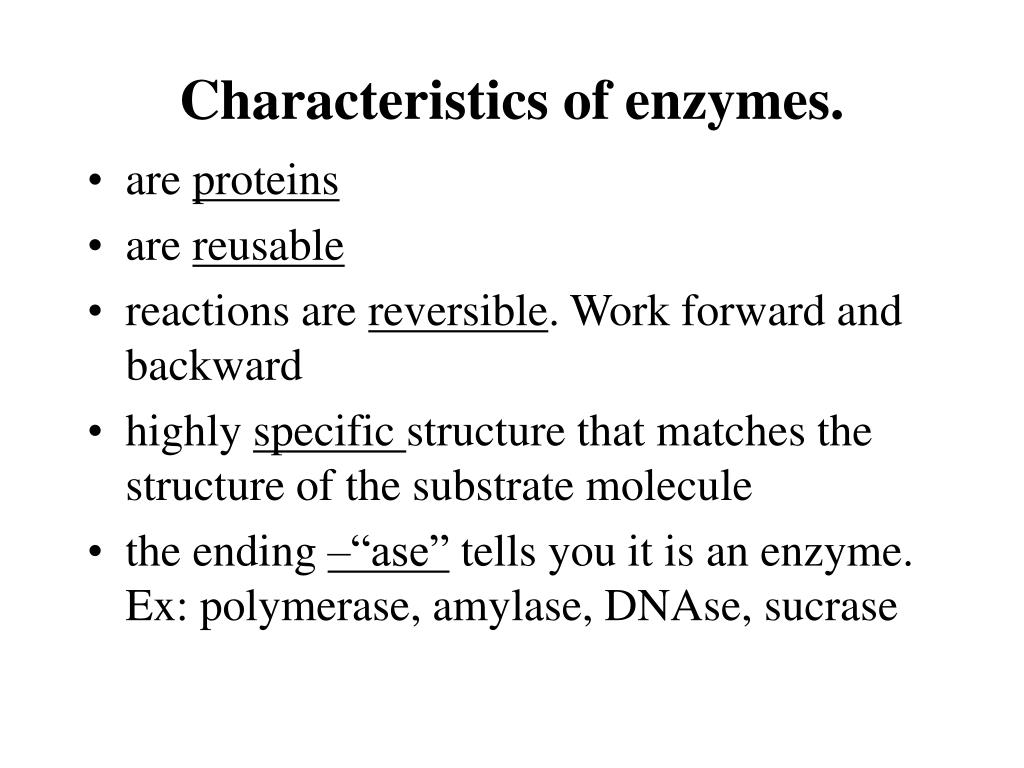 Characteristics of enzymes.