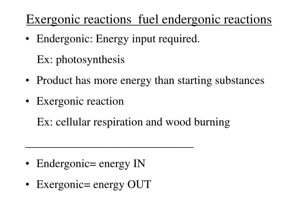 Exergonic reactions  fuel endergonic reactions