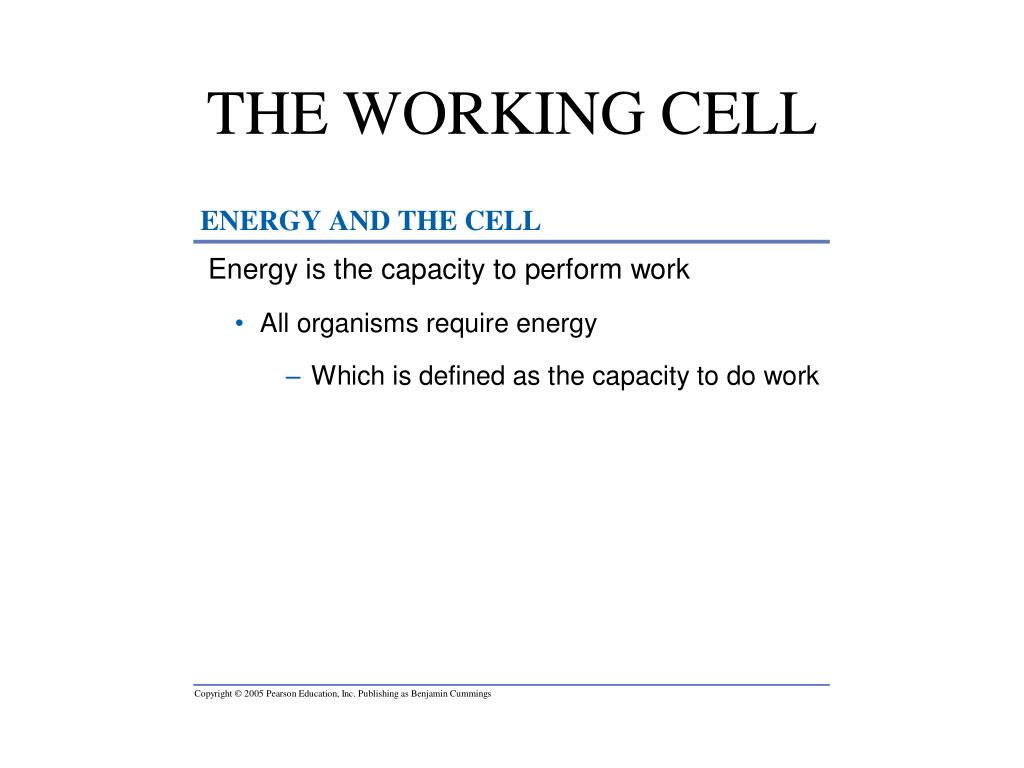 THE WORKING CELL