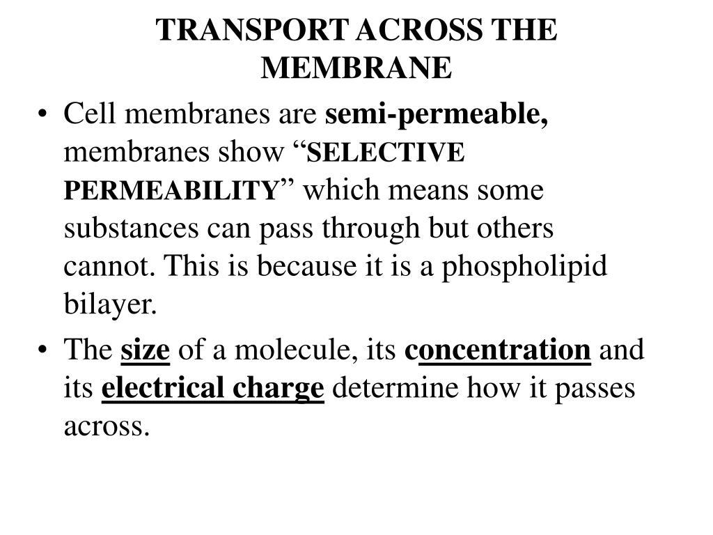 TRANSPORT ACROSS THE MEMBRANE
