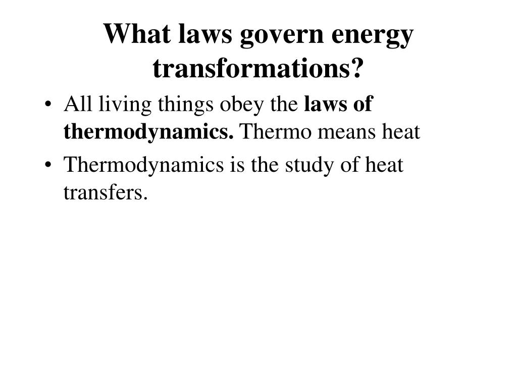 What laws govern energy transformations?
