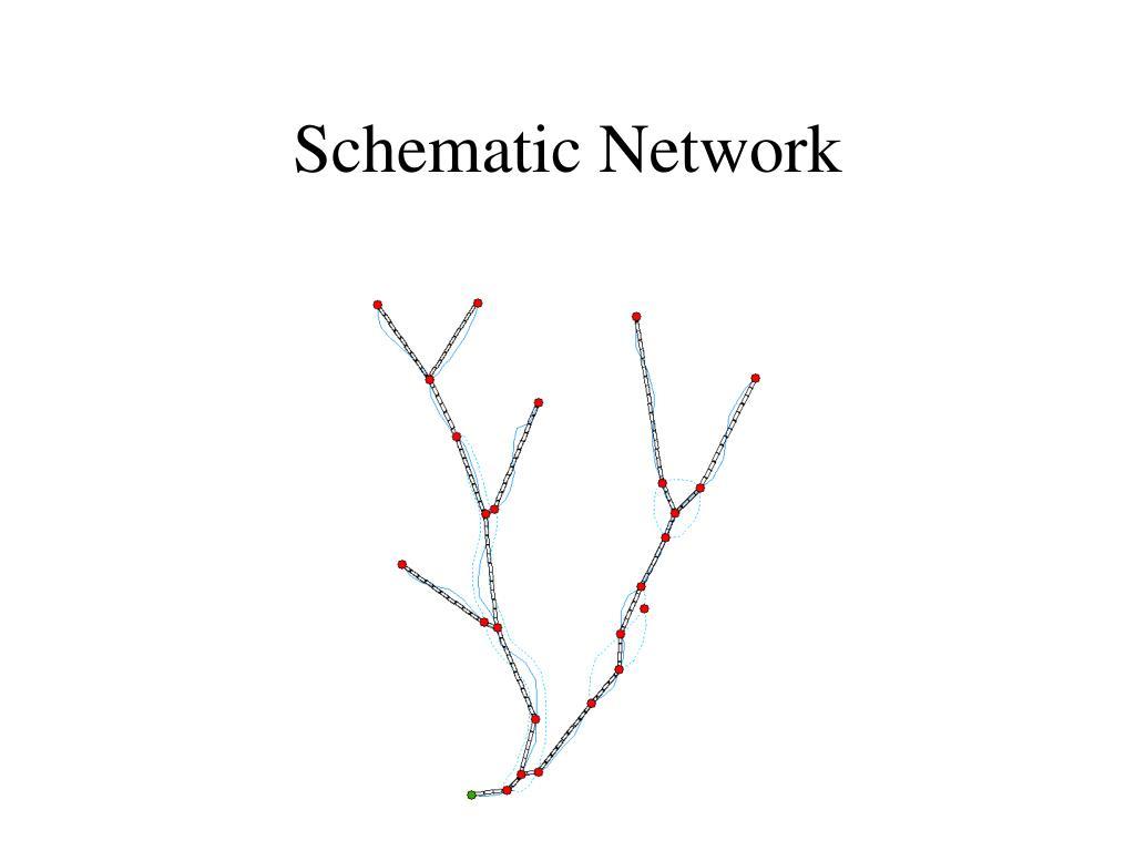 Schematic Network