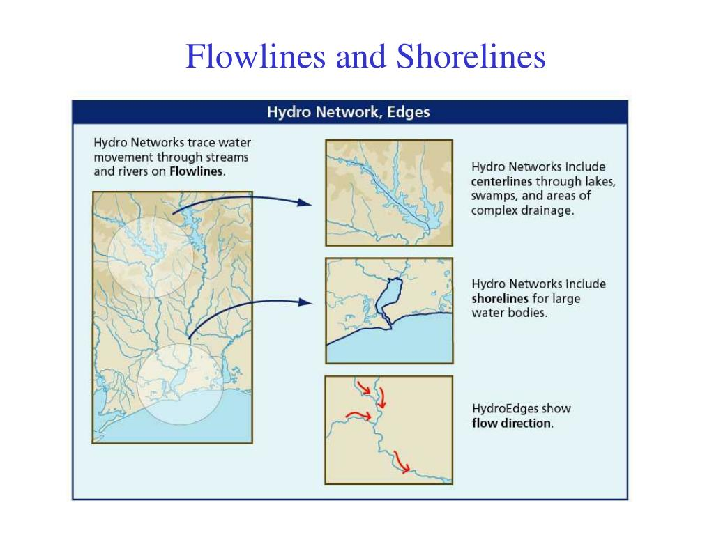 Flowlines and Shorelines