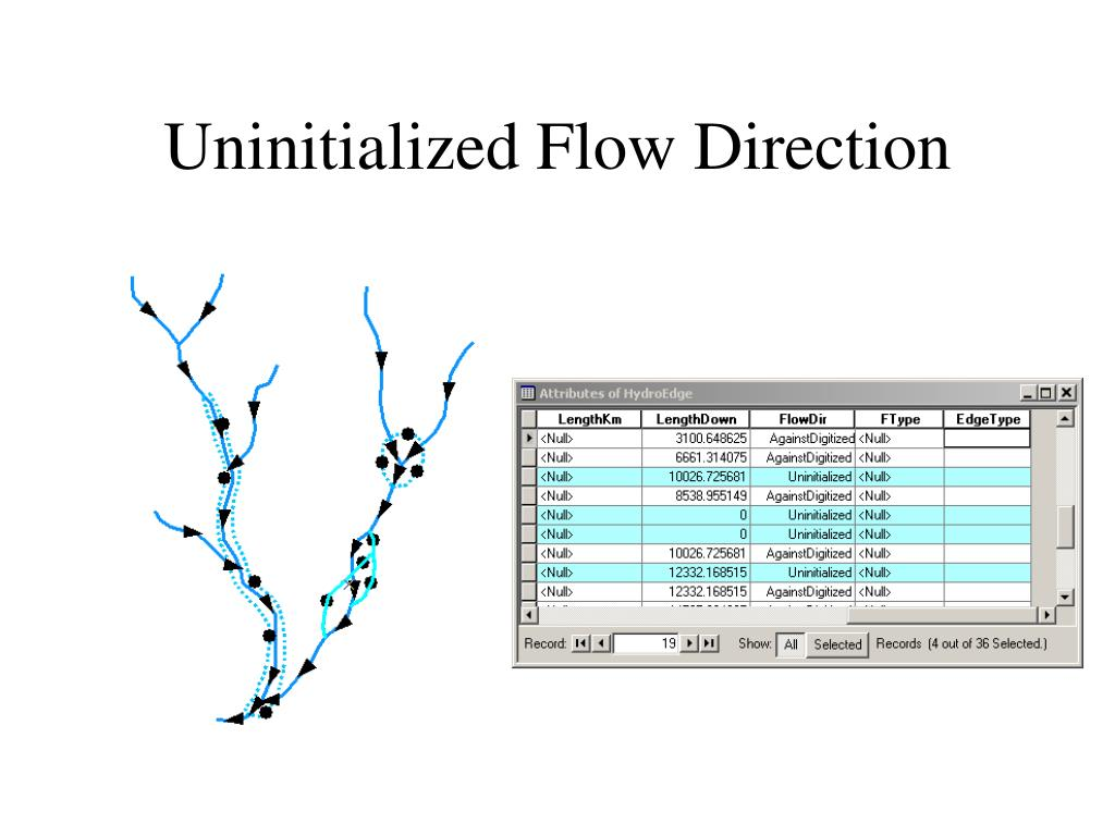Uninitialized Flow Direction