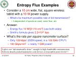 entropy flux examples