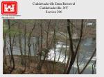 cuddebackville dam removal cuddebackville ny section 206