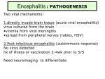 encephalitis pathogenesis