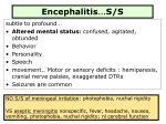 encephalitis s s