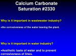 calcium carbonate saturation 23306