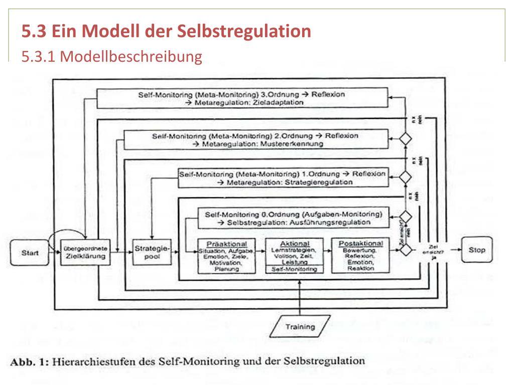 5.3 Ein Modell der Selbstregulation