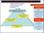 demonstrate understanding of the pulp and paper making process8