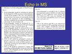 echo in ms