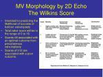 mv morphology by 2d echo the wilkins score