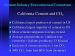 cement industry environmental consortium5