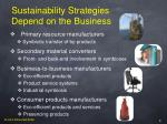 sustainability strategies depend on the business