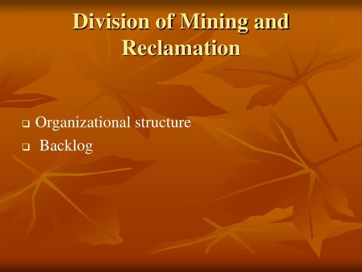 Division of Mining and Reclamation
