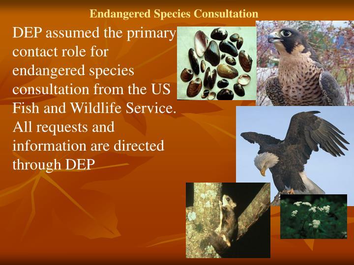 Endangered Species Consultation