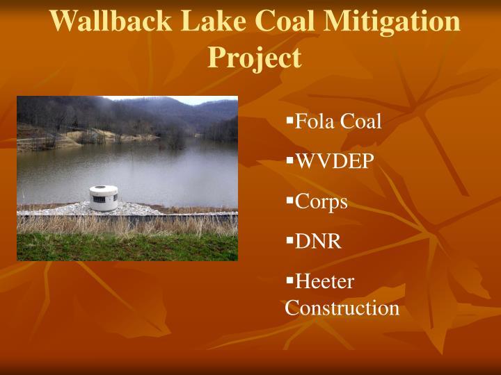 Wallback Lake Coal Mitigation Project