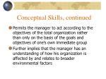 conceptual skills continued