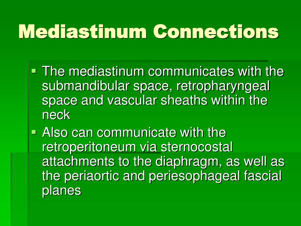 Mediastinum Connections