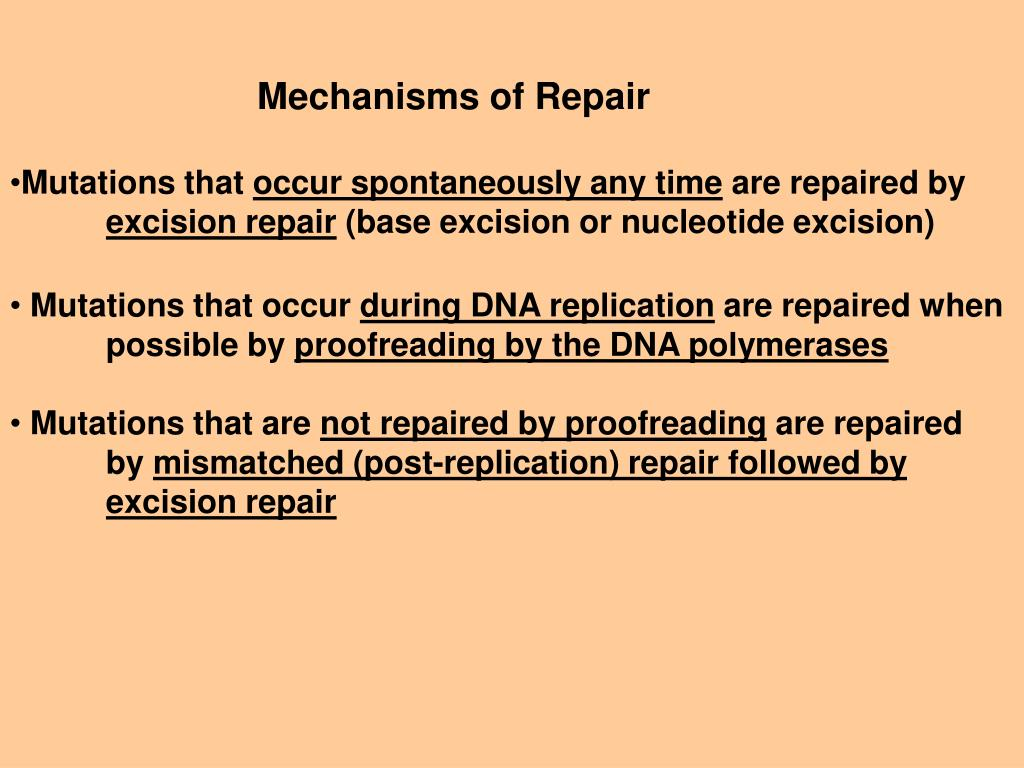 Mechanisms of Repair