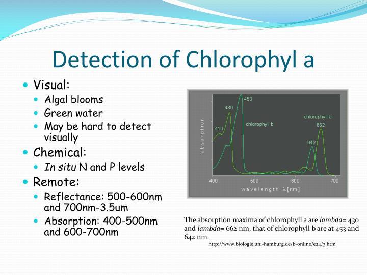 Detection of Chlorophyl a