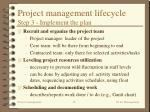 project management lifecycle step 3 implement the plan