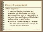 project management3