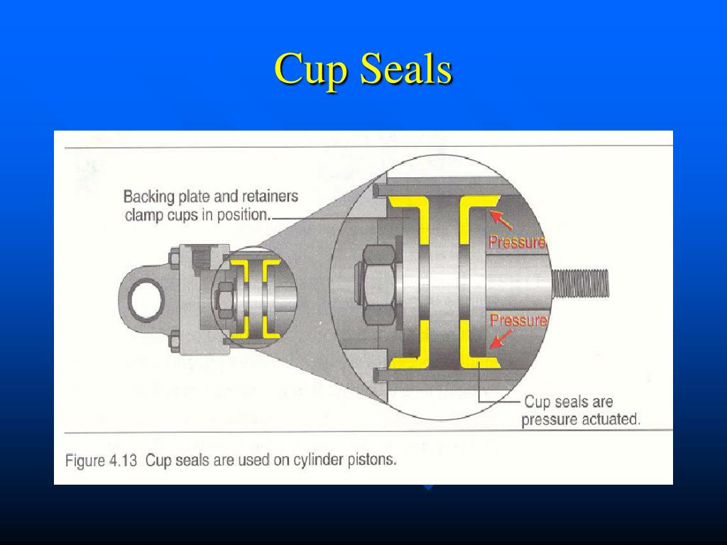 Cup Seals
