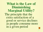 what is the law of diminishing marginal utility