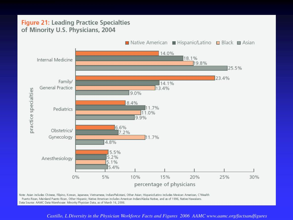 Castillo, L Diversity in the Physician Workforce Facts and Figures  2006  AAMC www.aamc.org/factsandfigures
