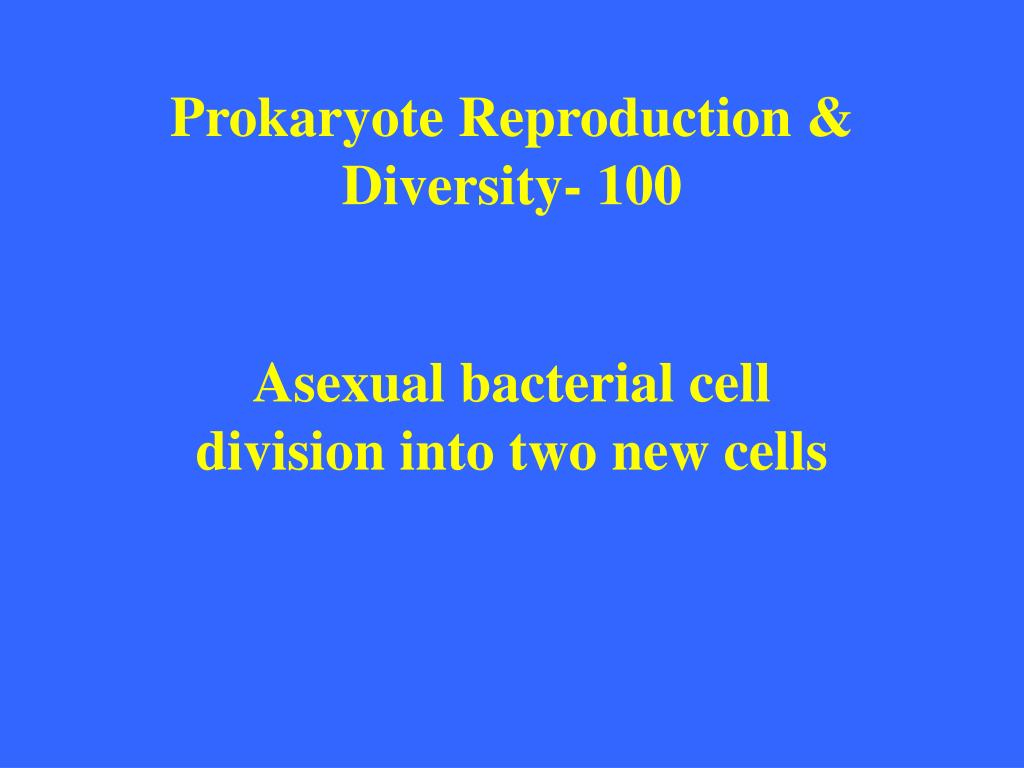 Prokaryote Reproduction & Diversity- 100