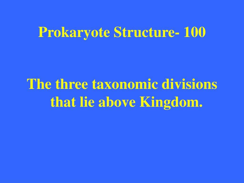 Prokaryote Structure- 100