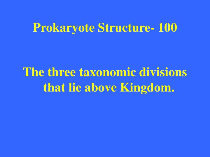 Prokaryote structure 100
