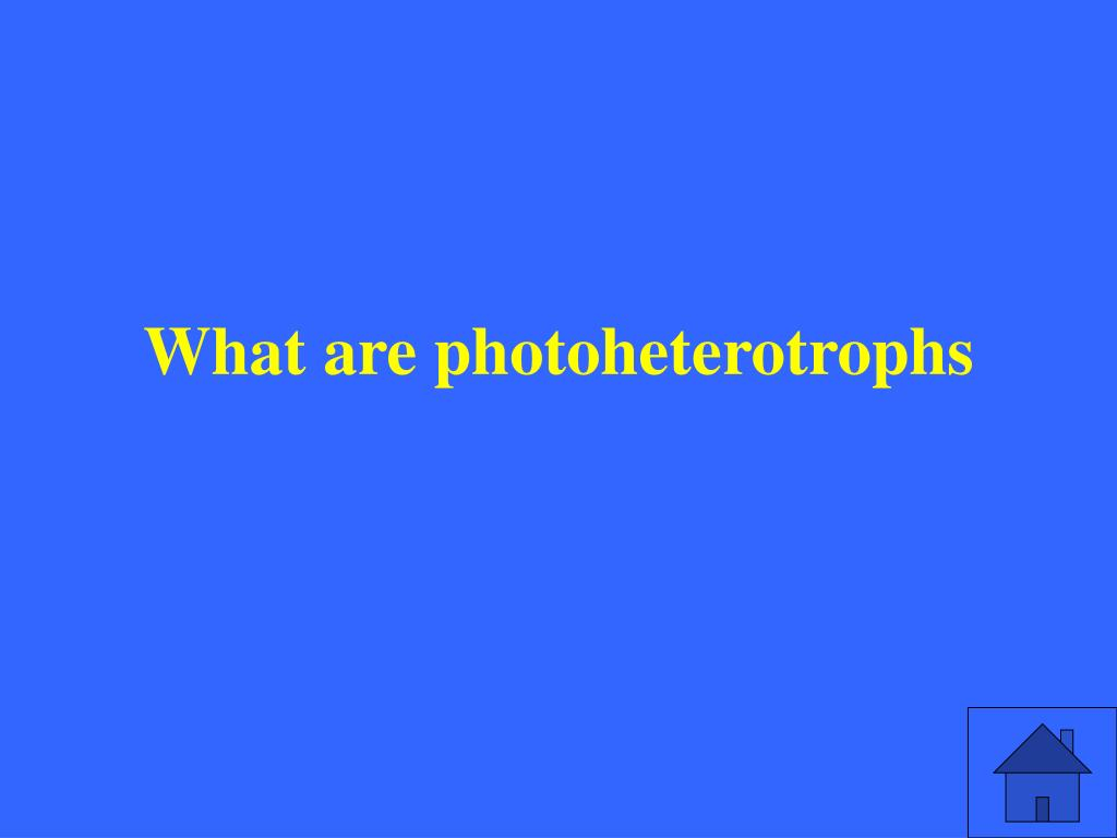 What are photoheterotrophs