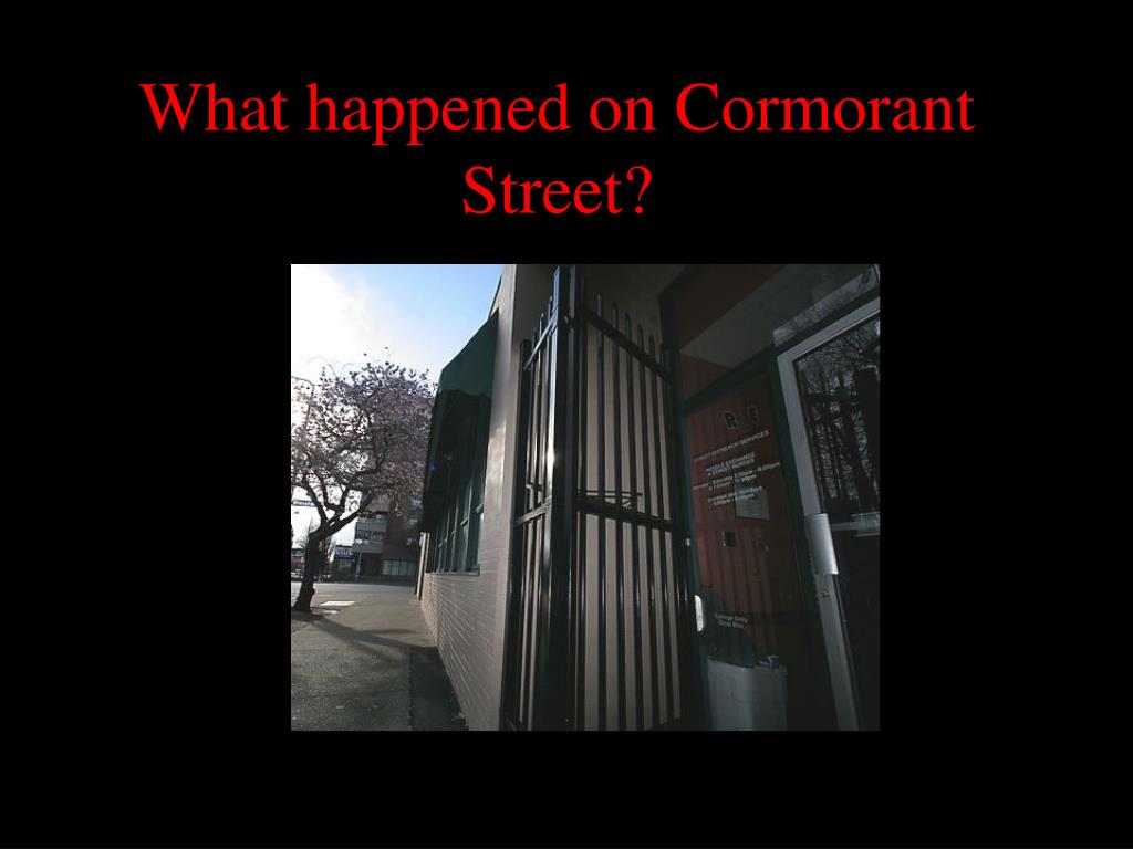 What happened on Cormorant Street?