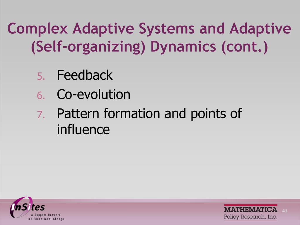 Complex Adaptive Systems and Adaptive (Self-organizing) Dynamics (cont.)