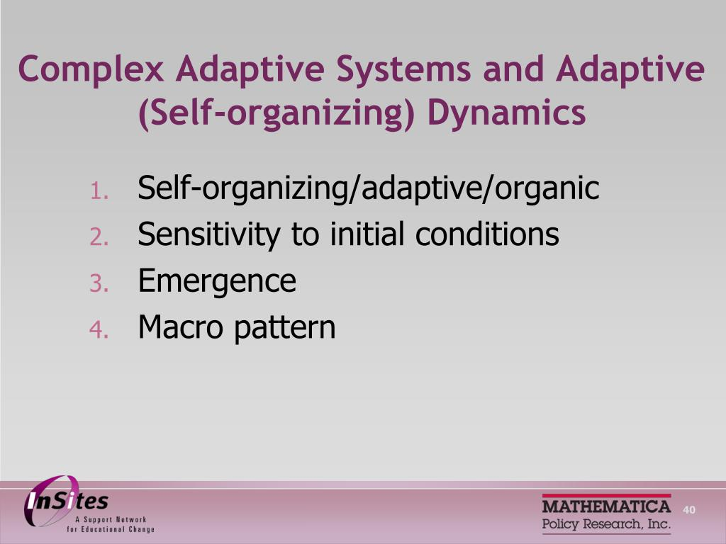 Complex Adaptive Systems and Adaptive (Self-organizing) Dynamics