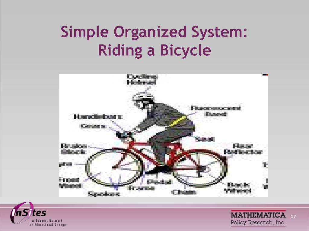 Simple Organized System: